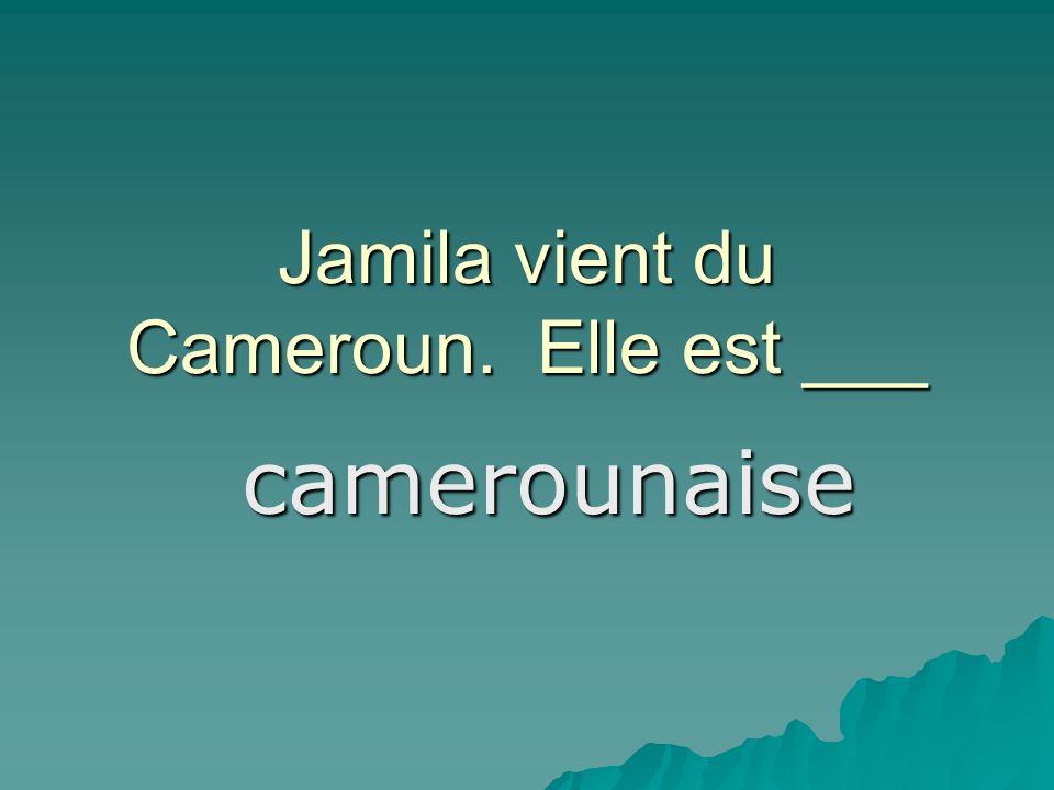 Jamila vient du Cameroun. Elle est ___ camerounaise
