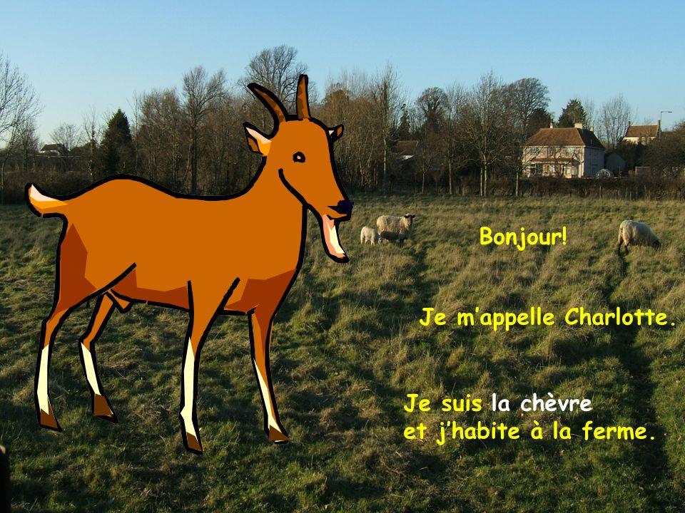 Bonjour! Je mappelle Charlotte. Je suis la chèvre et jhabite à la ferme.