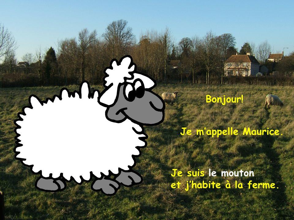 Bonjour! Je mappelle Maurice. Je suis le mouton et jhabite à la ferme.