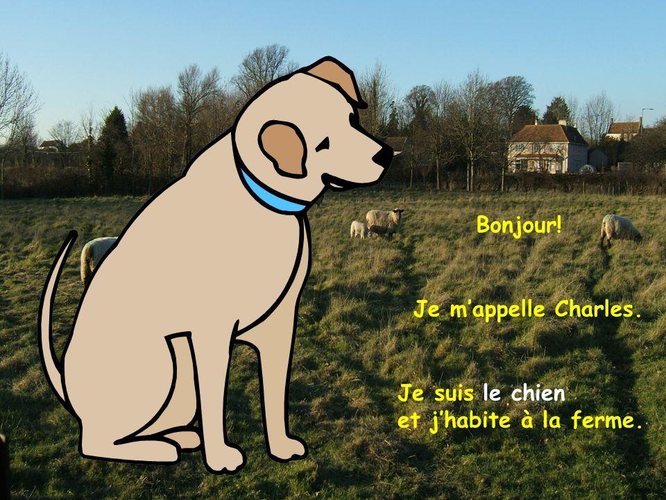 Je suis le chien et jhabite à la ferme. Je mappelle Charles. Bonjour!