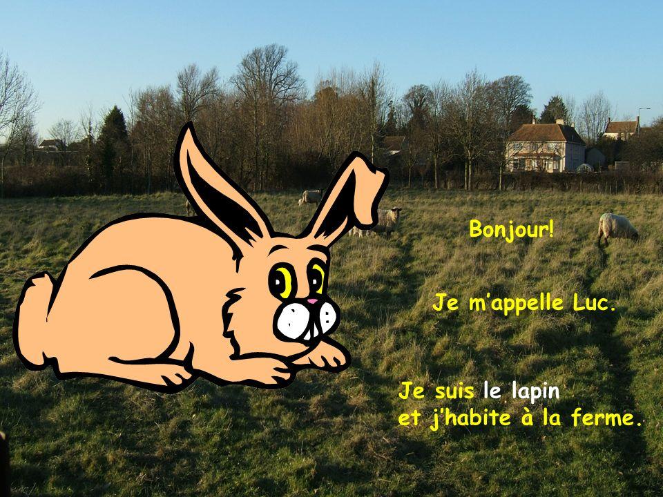 Je mappelle Luc. Je suis le lapin et jhabite à la ferme.