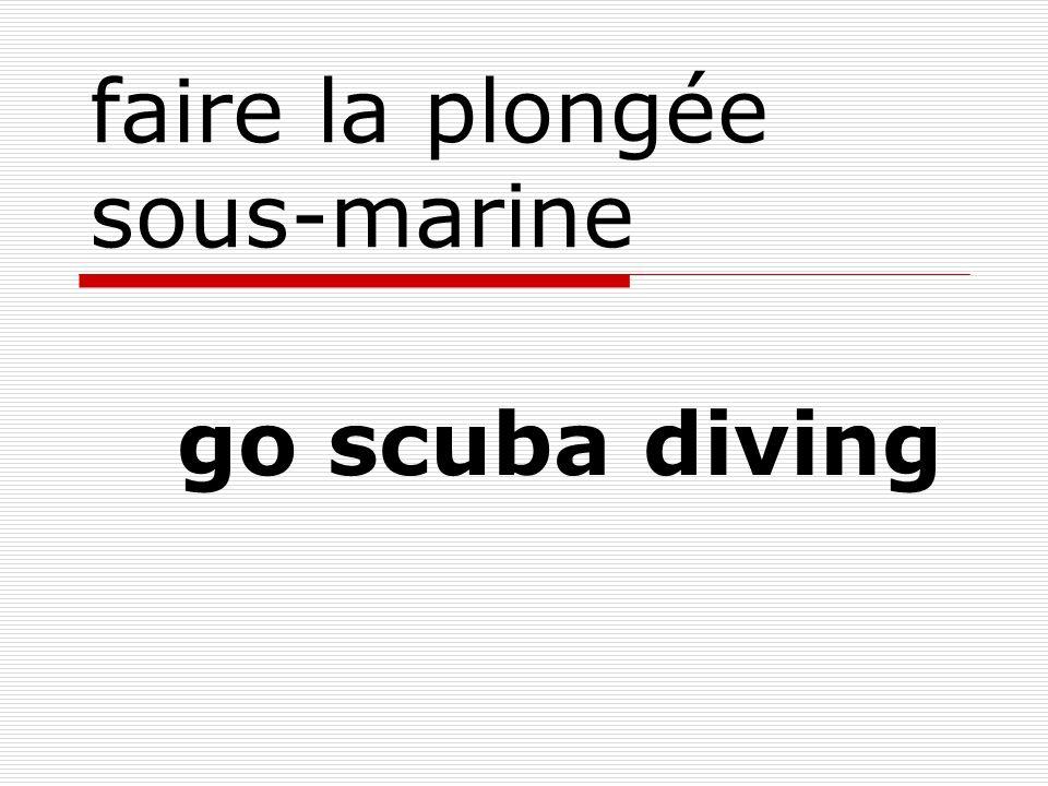 faire la plongée sous-marine go scuba diving