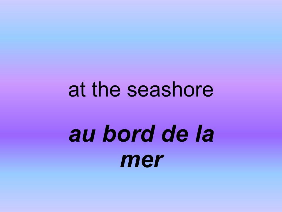 at the seashore au bord de la mer