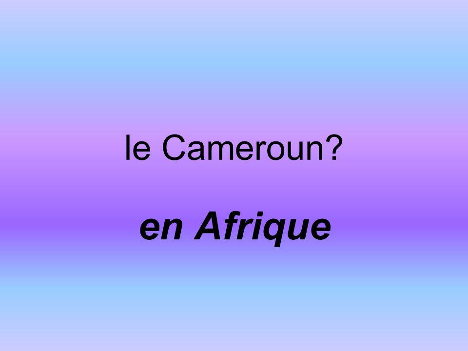 le Cameroun en Afrique