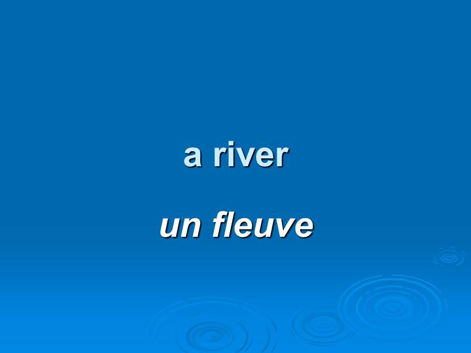 a river un fleuve