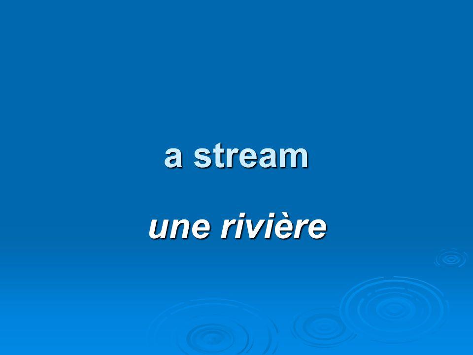 a stream une rivière