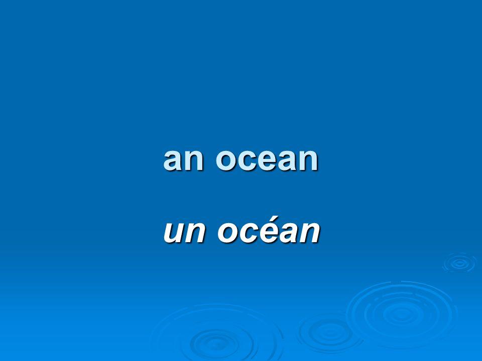 an ocean un océan