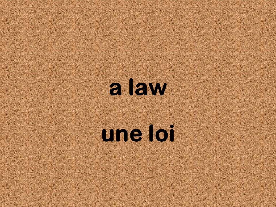 a law une loi