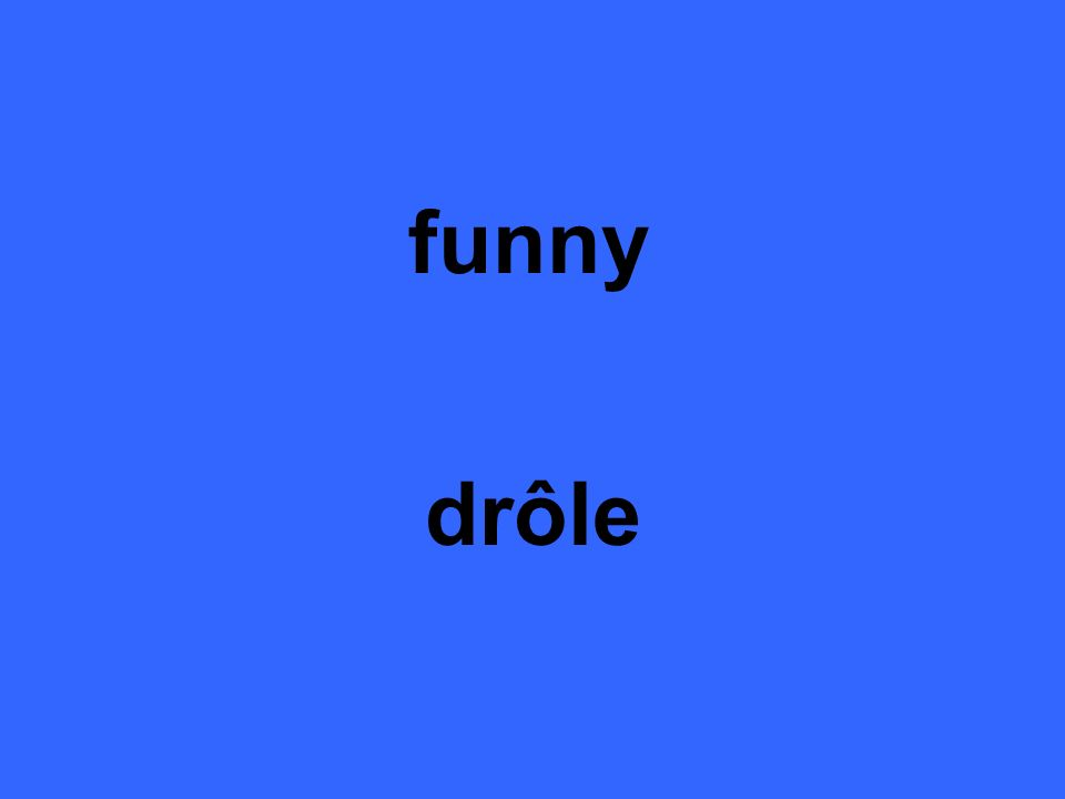 funny drôle