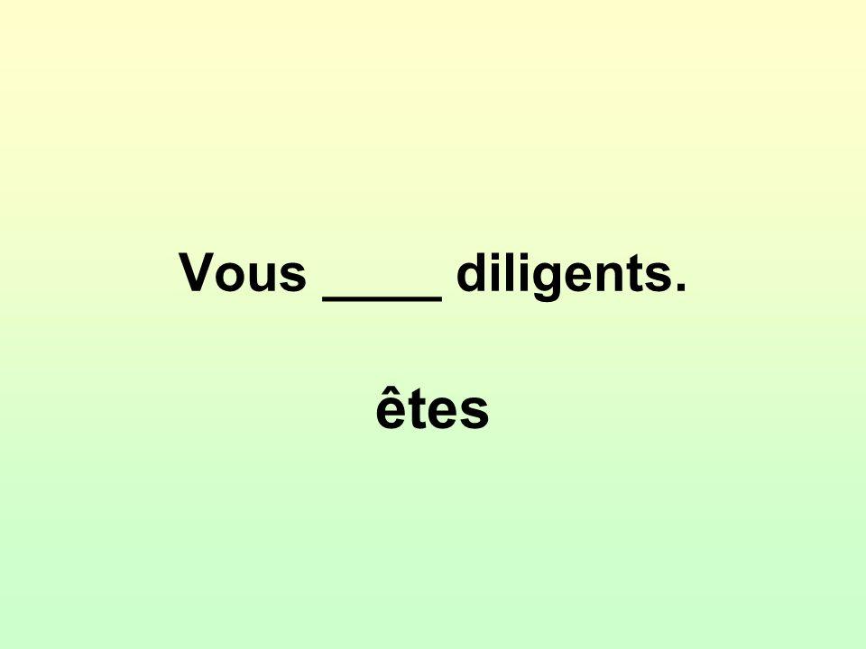 Vous ____ diligents. êtes