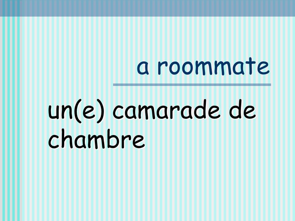 a roommate un(e) camarade de chambre
