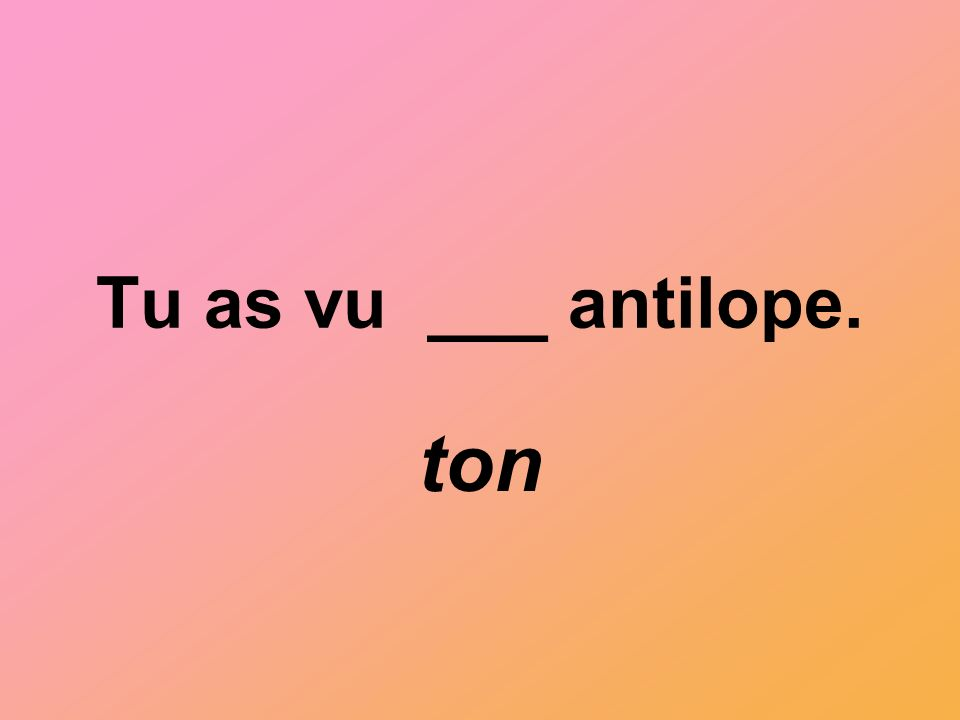 Tu as vu ___ antilope. ton