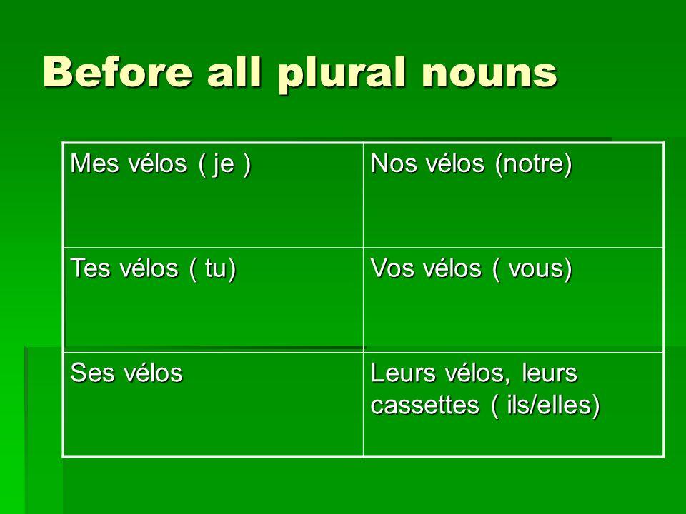 Before all plural nouns Mes vélos ( je ) Nos vélos (notre) Tes vélos ( tu) Vos vélos ( vous) Ses vélos Leurs vélos, leurs cassettes ( ils/elles)