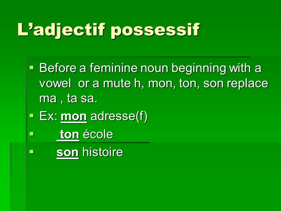 Ladjectif possessif Before a feminine noun beginning with a vowel or a mute h, mon, ton, son replace ma, ta sa.