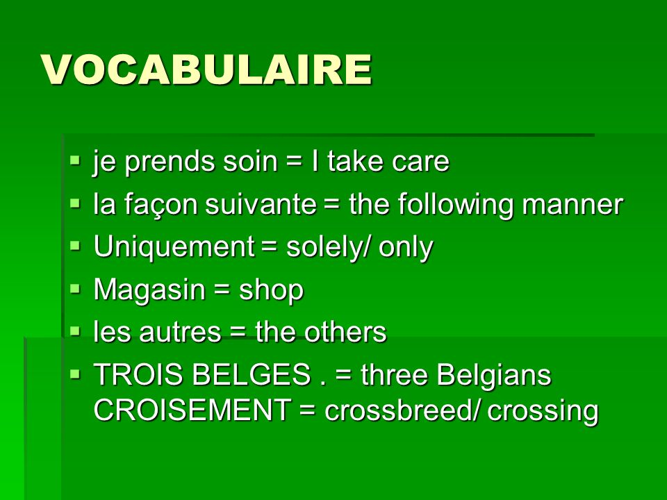 VOCABULAIRE je prends soin = I take care je prends soin = I take care la façon suivante = the following manner la façon suivante = the following manner Uniquement = solely/ only Uniquement = solely/ only Magasin = shop Magasin = shop les autres = the others les autres = the others TROIS BELGES.