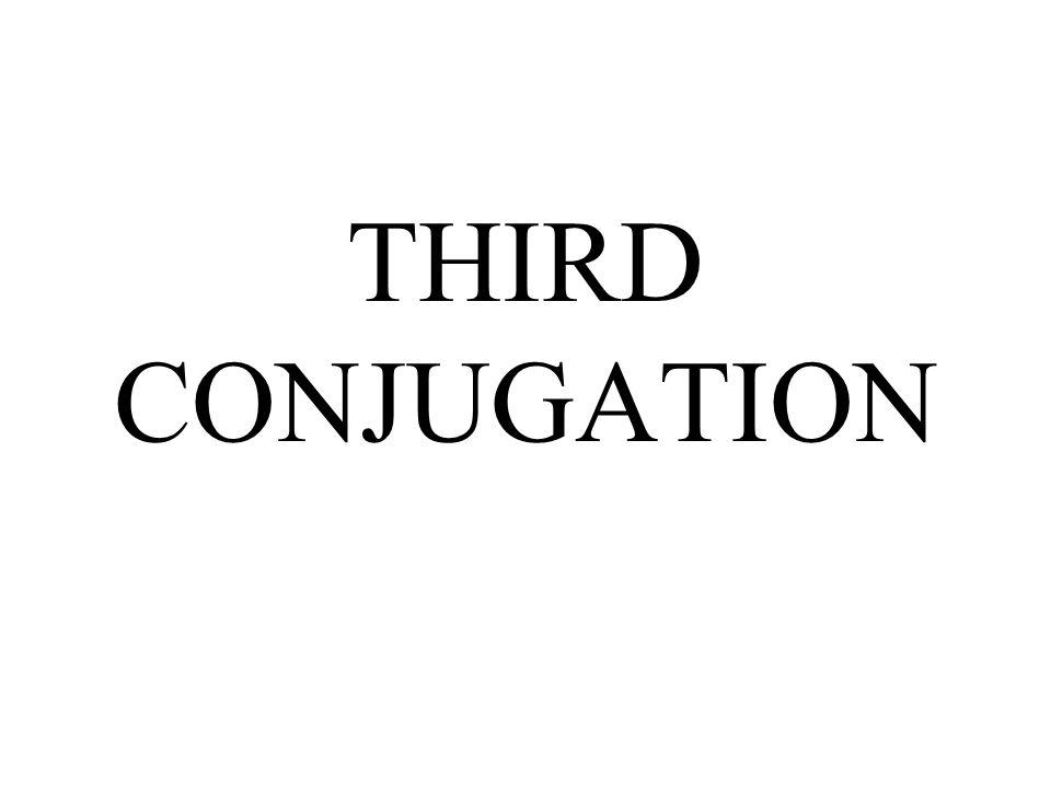 THIRD CONJUGATION