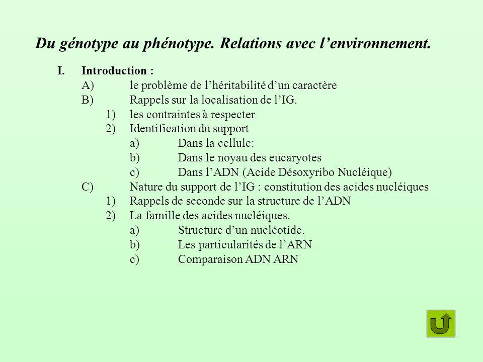 Du génotype au phénotype. Relations avec lenvironnement. I.Introduction : A)le problème de lhéritabilité dun caractère B)Rappels sur la localisation d