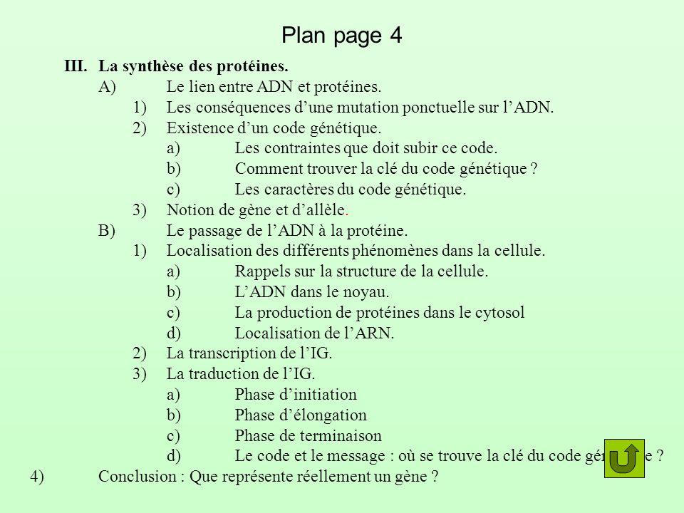 Plan page 4 III.La synthèse des protéines. A)Le lien entre ADN et protéines. 1)Les conséquences dune mutation ponctuelle sur lADN. 2)Existence dun cod