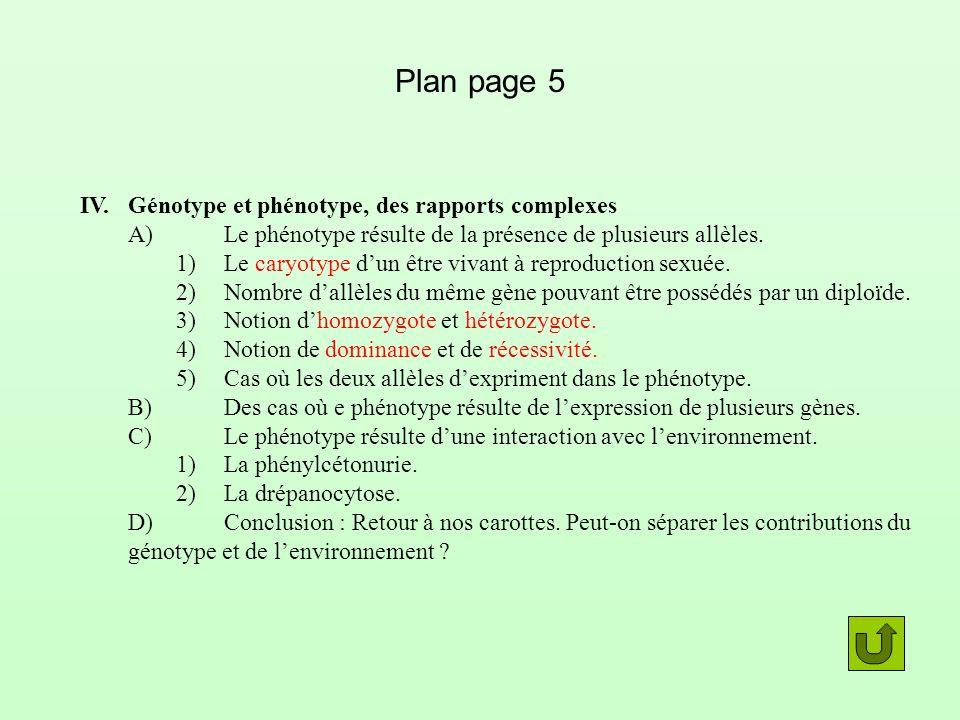Plan page 5 IV.Génotype et phénotype, des rapports complexes A)Le phénotype résulte de la présence de plusieurs allèles. 1)Le caryotype dun être vivan