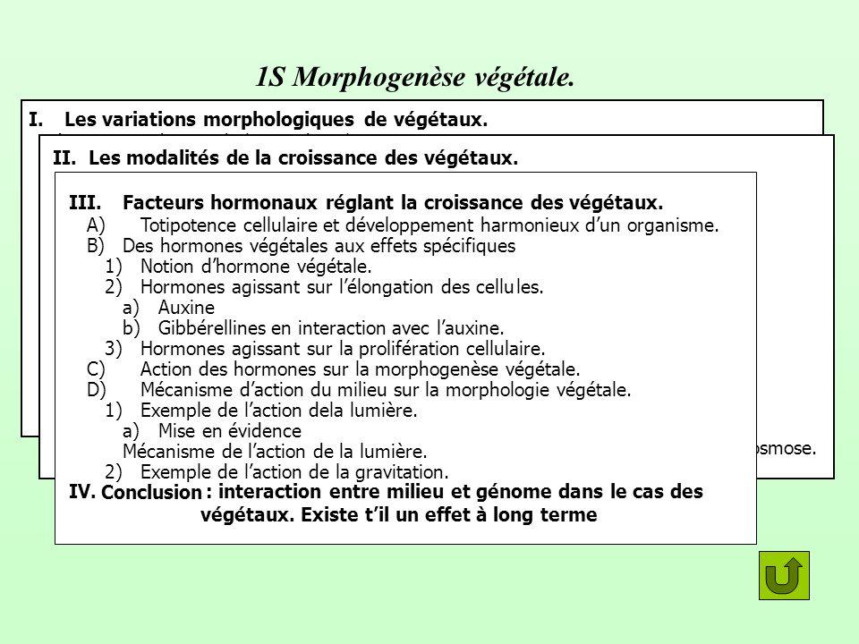 1S Morphogenèse végétale. I.Les variations morphologiques de végétaux. A)Types de morphologies des plantes 1)Les différentes parties dune plante à fle