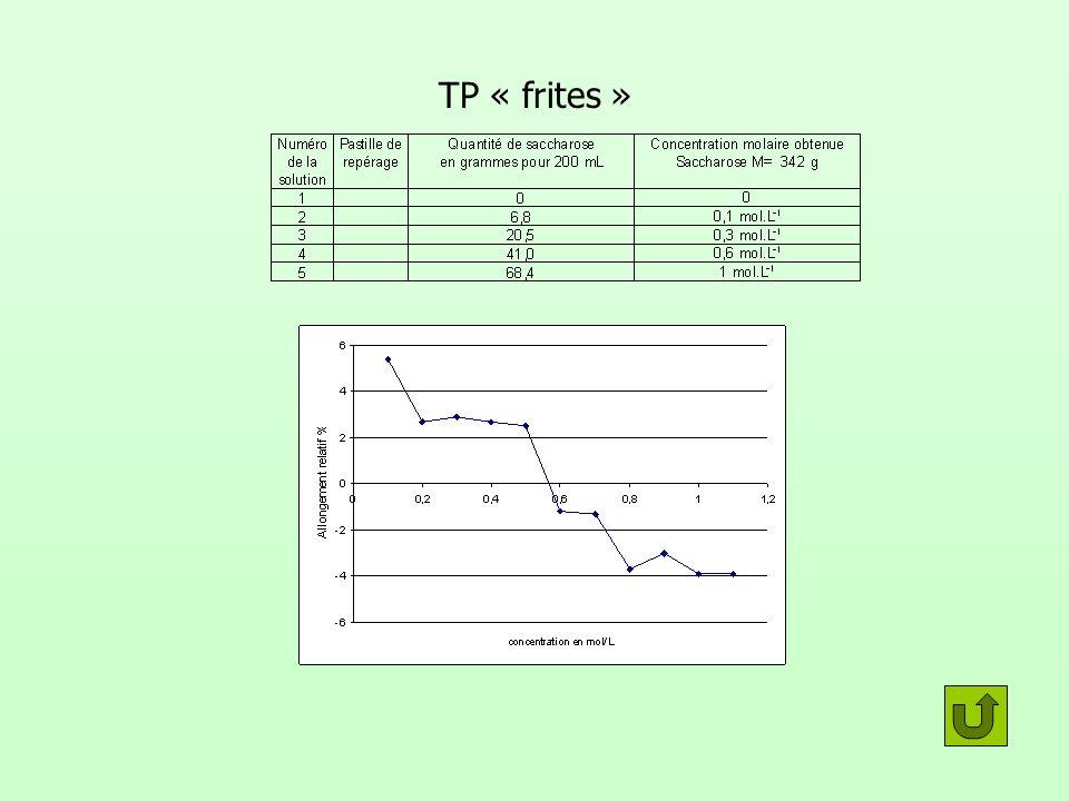 TP « frites »