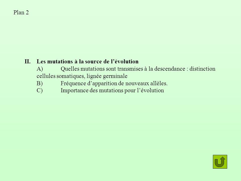 II.Les mutations à la source de lévolution A)Quelles mutations sont transmises à la descendance : distinction cellules somatiques, lignée germinale B)