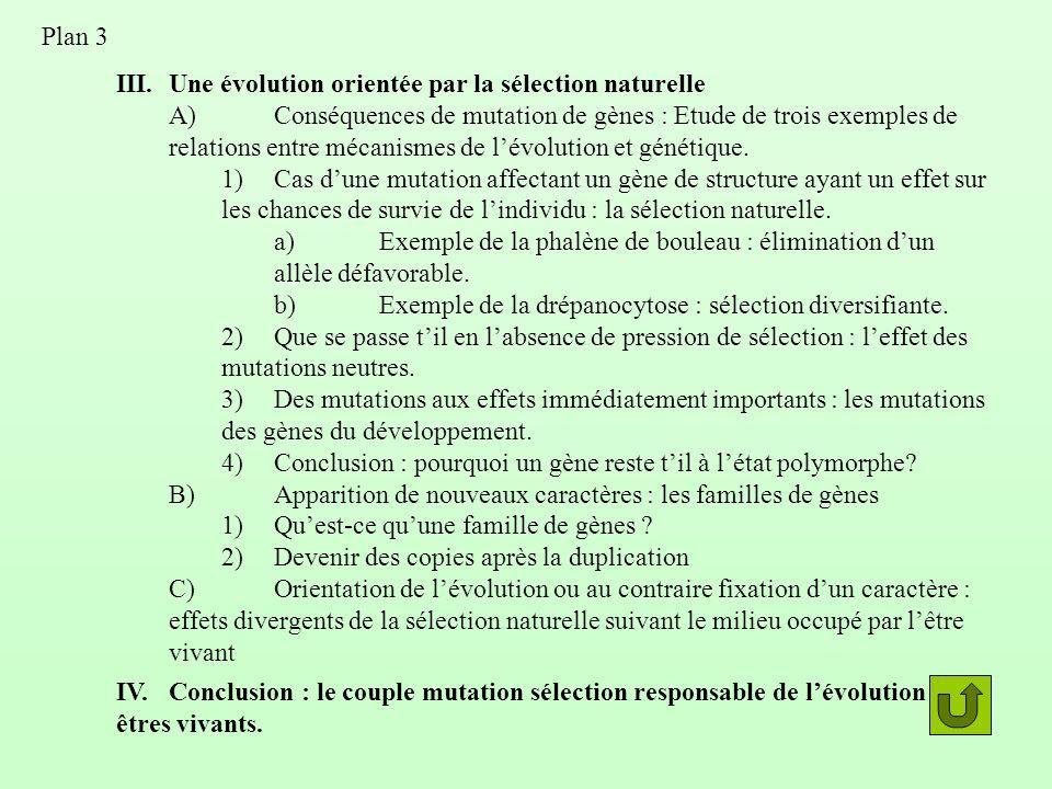 III.Une évolution orientée par la sélection naturelle A)Conséquences de mutation de gènes : Etude de trois exemples de relations entre mécanismes de l