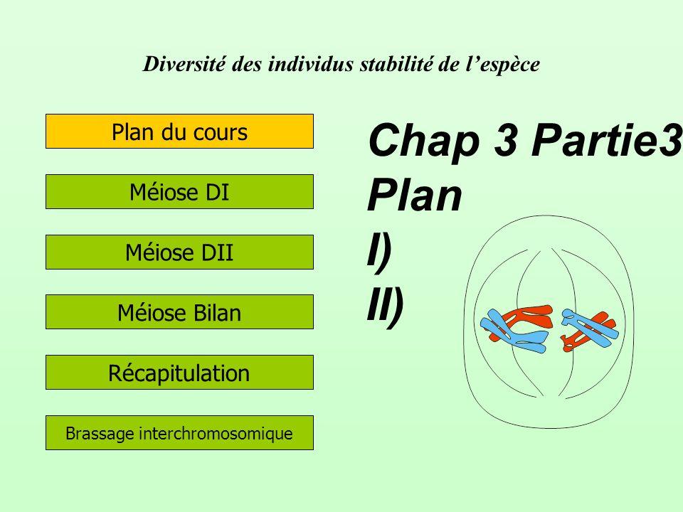 Diversité des individus stabilité de lespèce Méiose DII Méiose DI Méiose Bilan Plan du cours Récapitulation Chap 3 Partie3 Plan I) II) Brassage interc