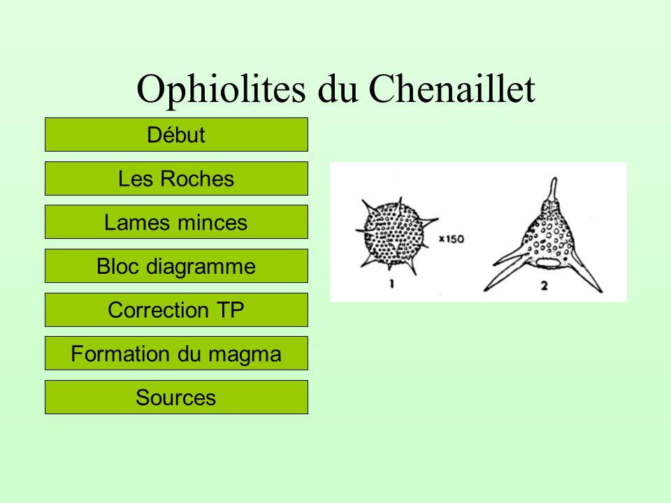 Ophiolites du Chenaillet Lames minces Les Roches Bloc diagramme Début Sources Correction TP Formation du magma