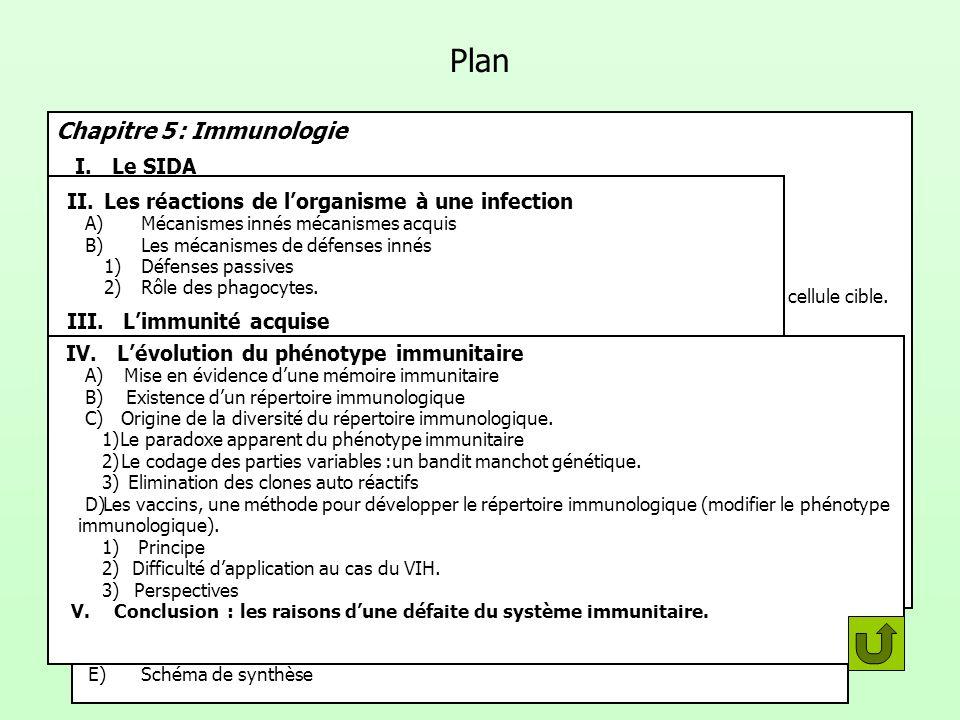 Chapitre 5 : Immunologie I.Le SIDA A)Lhistoire de la pandémie. B)Lagent de la maladie 1)Nature du virus. 2)Modes de transmission du virus. 3)Le cycle