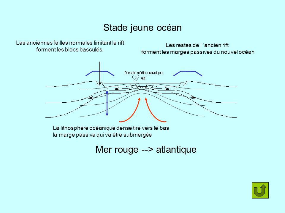 Stade jeune océan Mer rouge --> atlantique La lithosphère océanique dense tire vers le bas la marge passive qui va être submergée Les anciennes faille