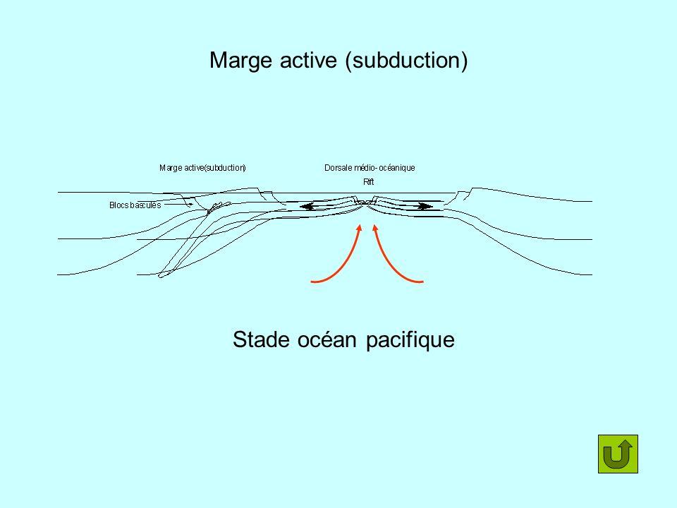 Marge active (subduction) Stade océan pacifique