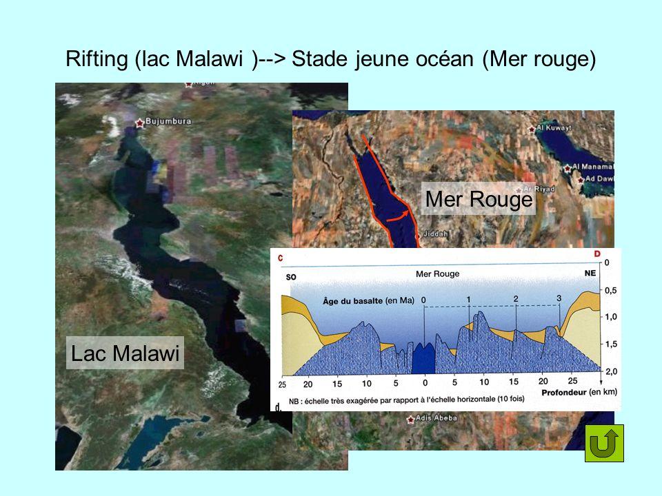 Rifting (lac Malawi )--> Stade jeune océan (Mer rouge) Lac Malawi Mer Rouge