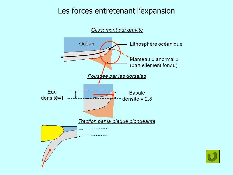 Les forces entretenant lexpansion Glissement par gravité Lithosphère océanique Manteau « anormal » (partiellement fondu) Océan Eau densité=1 Basale de