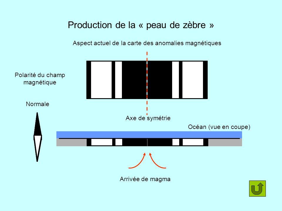 Production de la « peau de zèbre » Polarité du champ magnétique Arrivée de magma Aspect actuel de la carte des anomalies magnétiques Axe de symétrie N