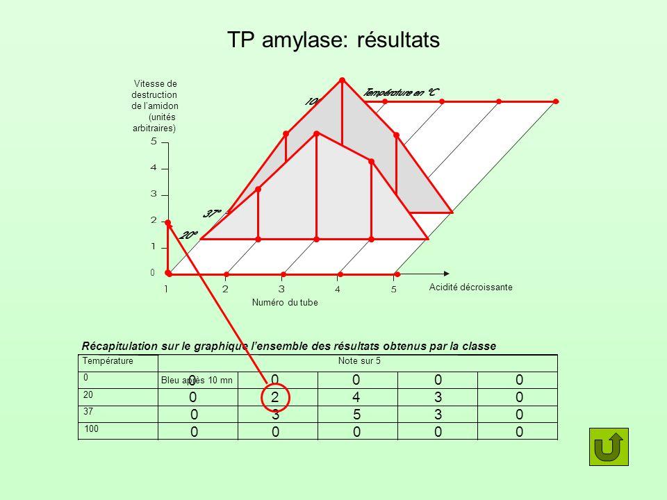 Température pH: effet sur la vitesse daction de lamylase Mesures 1 S1 (3/12/2007)