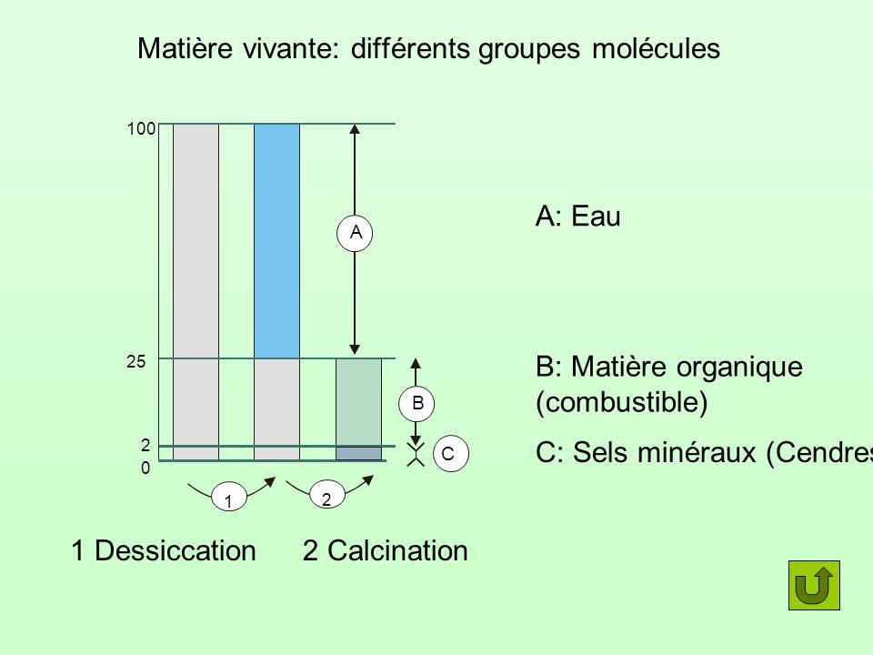 Matière vivante: différents groupes molécules A: Eau B: Matière organique (combustible) C C: Sels minéraux (Cendres) 1 Dessiccation 1 B A 100 25 2 0 2