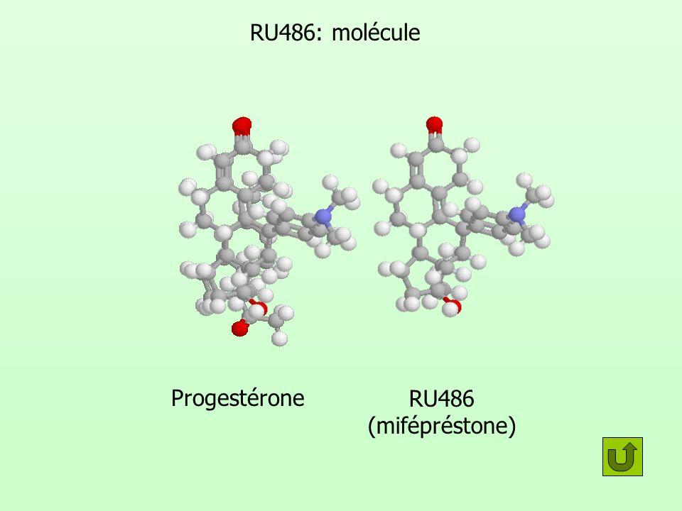 RU486: molécule Progestérone RU486 (mifépréstone)