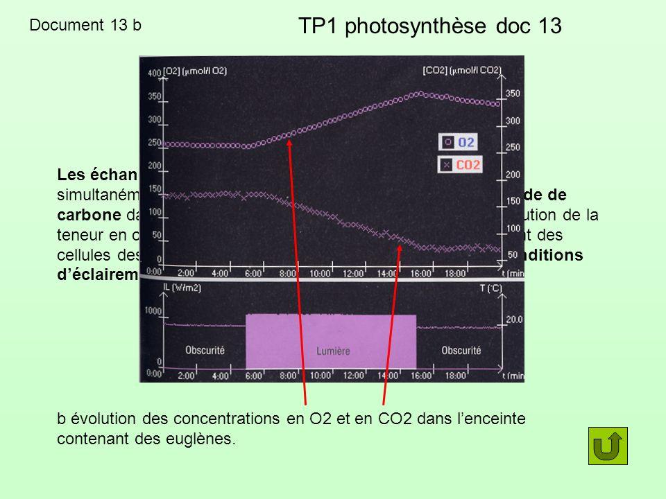 TP1 photosynthèse doc 13 CO2 analyse Temps (mn) Lumière Température [CO2] 0 à 6 mn 0 20°C stable 6 à 16 mn 1000 W/m2 20°C baisse 16 à 20 mn 0 20°C stable
