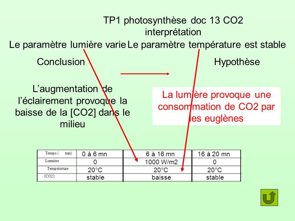 Temps (mn) Lumière Température [CO2] 0 à 6 mn6 à 16 mn16 à 20 mn 01000 W/m20 20°C stablebaissestable TP1 photosynthèse doc 13 CO2 interprétation Conclusion Laugmentation de léclairement provoque la baisse de la [CO2] dans le milieu La lumière provoque une consommation de CO2 par les euglènes Le paramètre lumière varieLe paramètre température est stable Hypothèse