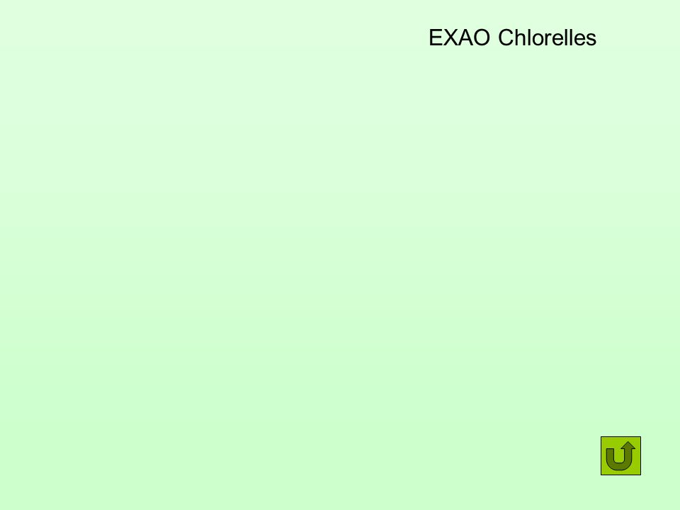 EXAO Chlorelles