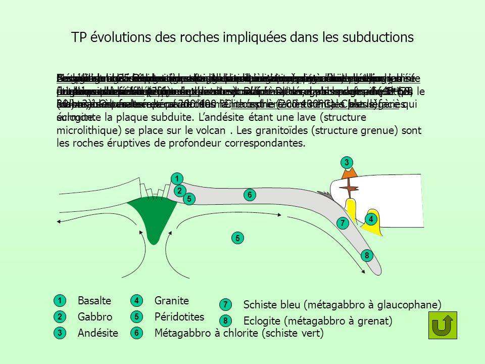TP évolutions des roches impliquées dans les subductions 5 3 4 6 7 8 1 2 Basalte et andésite ont une structure microlithique:donc sont des roches érup