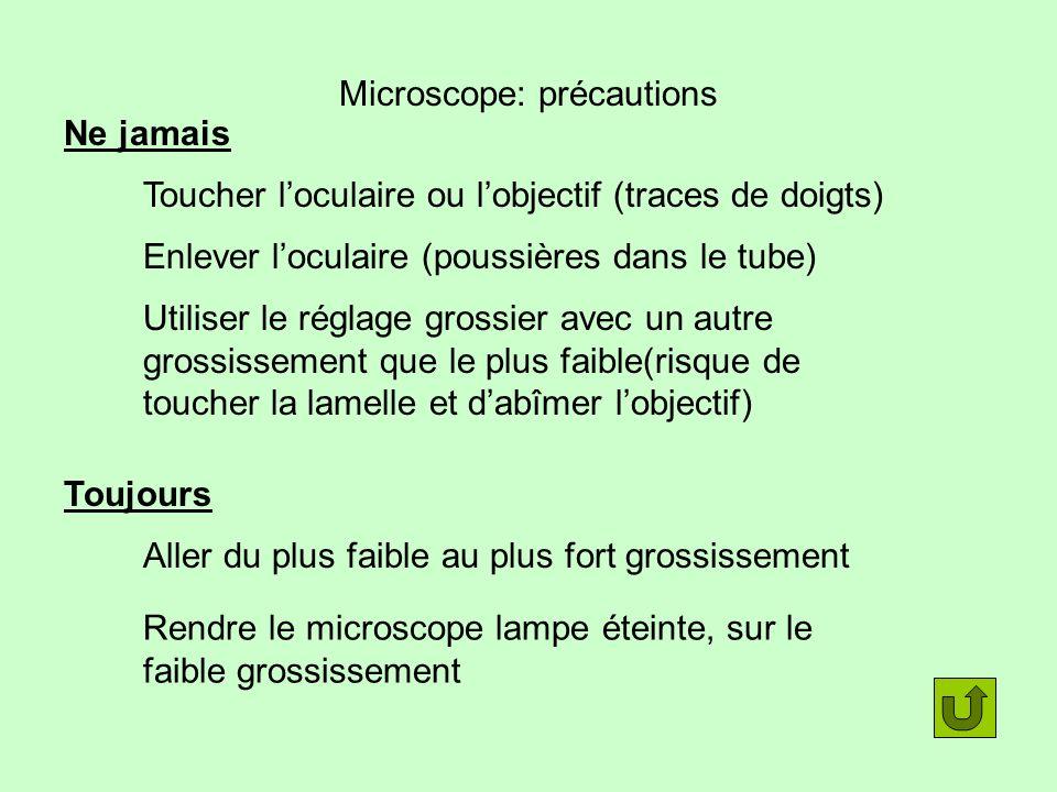 Microscope: précautions Ne jamais Toucher loculaire ou lobjectif (traces de doigts) Enlever loculaire (poussières dans le tube) Utiliser le réglage gr