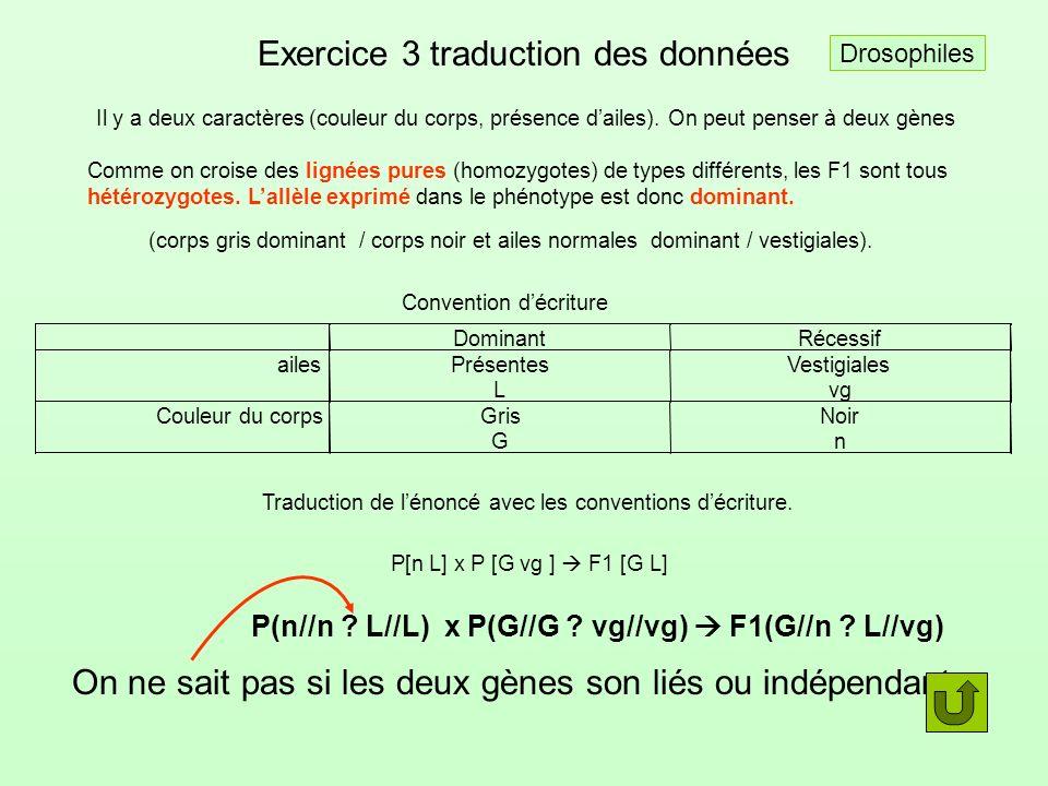 Exercice 3 traduction des données Il y adeux caractères (couleur du corps, présence dailes). On peut penser àdeux gènes Comme on croise des lignées pu