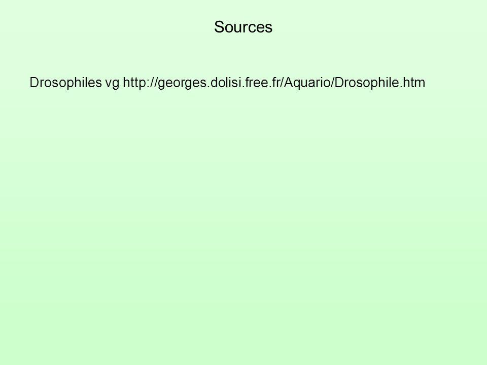 Sources Drosophiles vg http://georges.dolisi.free.fr/Aquario/Drosophile.htm