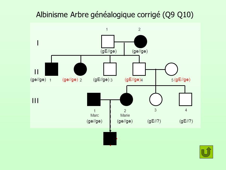 Albinisme Arbre généalogique corrigé (Q9 Q10) 12 12345 1 Marc 2 Marie 34 (ge//ge)(gE//ge) (ge//ge)(gE//ge) (gE//?) (ge//ge) (gE//ge)(ge//ge) ?