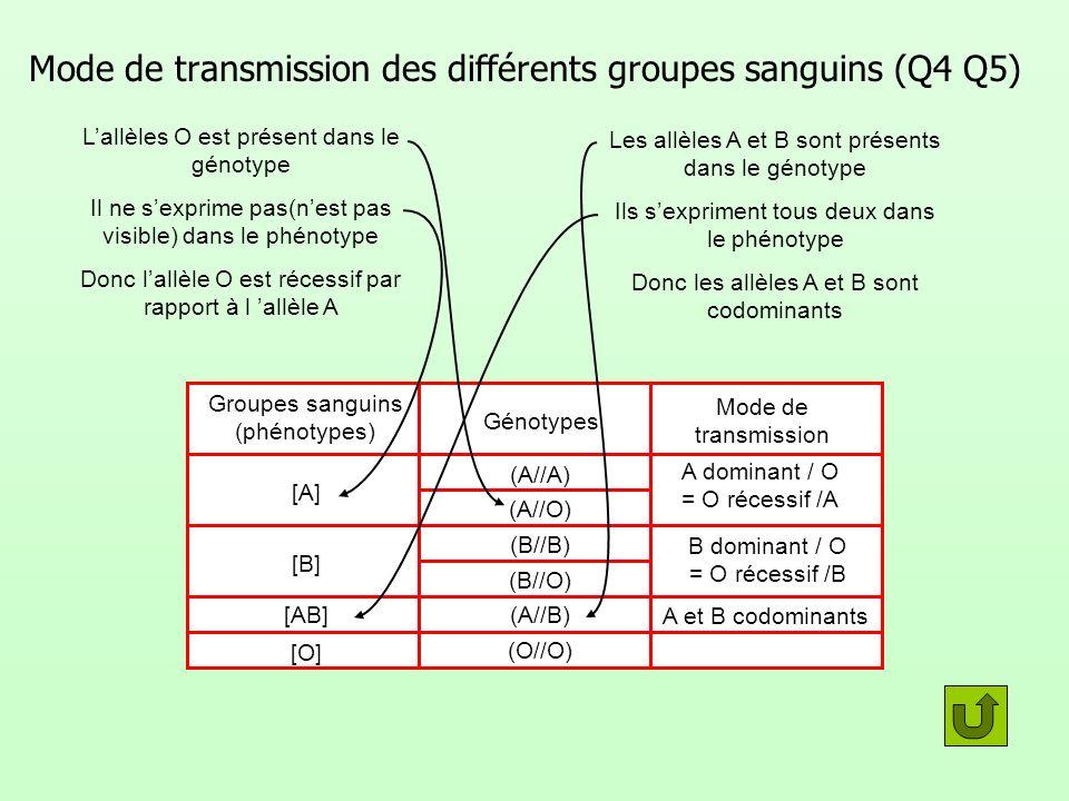 Mode de transmission A et B codominants Mode de transmission des différents groupes sanguins (Q4 Q5) A dominant / O = O récessif /A Génotypes (A//A) (