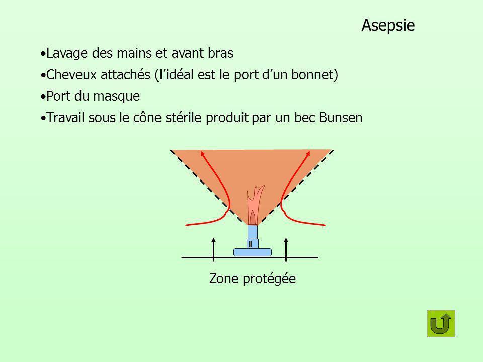 Asepsie Port du masque Travail sous le cône stérile produit par un bec Bunsen Lavage des mains et avant bras Cheveux attachés (lidéal est le port dun