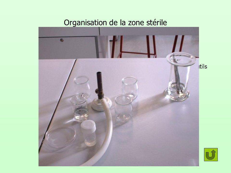 Organisation de la zone stérile D A 1 B 2 4 C 3 E B 1 C 2 4 3 C 1 2 4 3 Alcool et outils Rinçage Domestos et fragment végétal Rinçage 2Rinçage 3