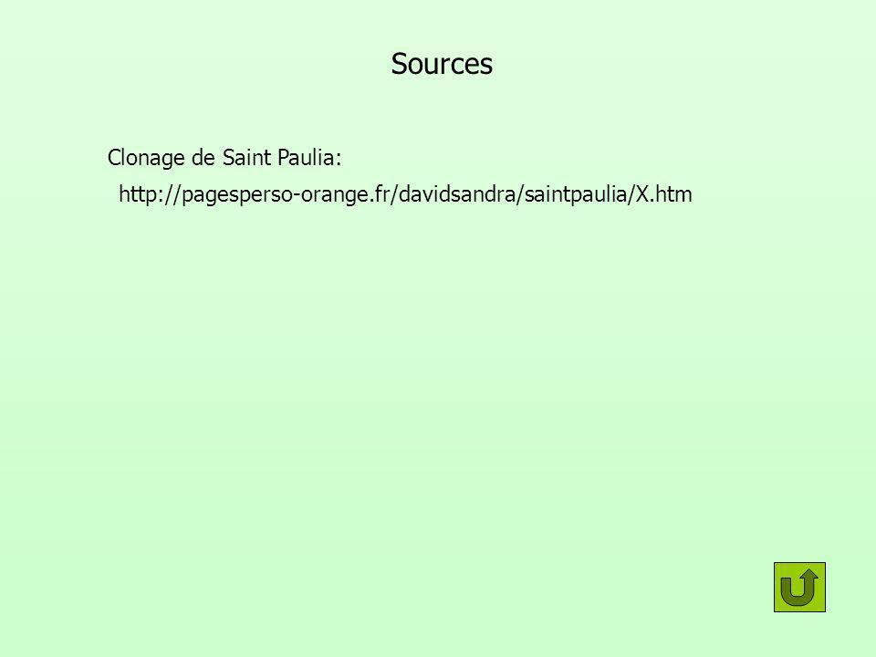Sources Clonage de Saint Paulia: http://pagesperso-orange.fr/davidsandra/saintpaulia/X.htm
